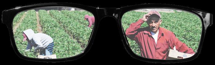 En brille med folk der høster